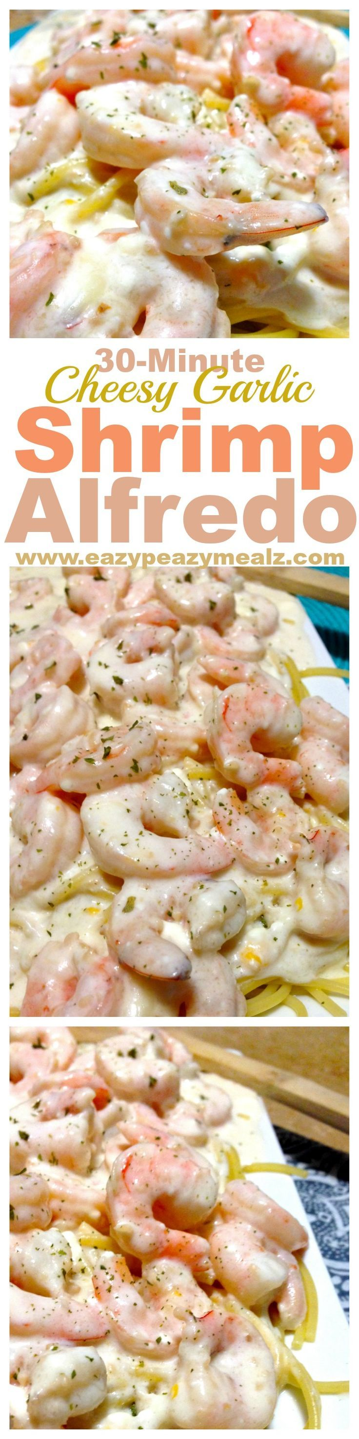 30 minutes for this cheesy garlic alfredo packed with shrimp and flavor! Perfect for a busy weeknight meal. Yum! @rachael_yerkes