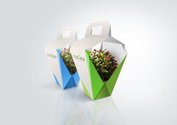 Design de Embalagem bonita
