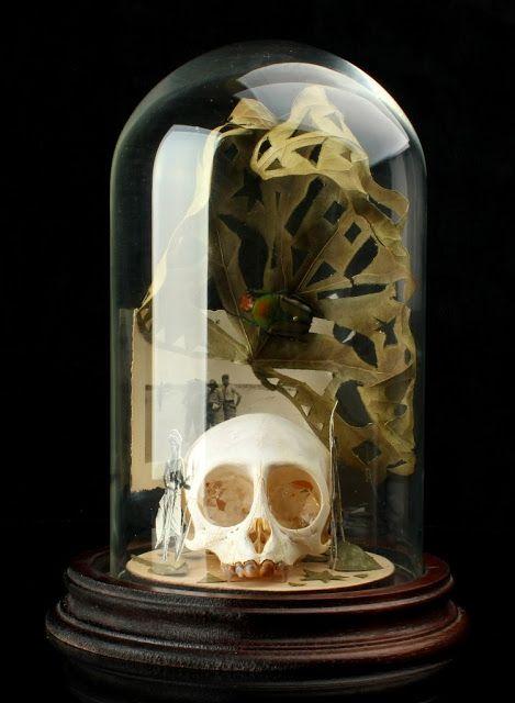 Pablo Mesa Capella Souvenir dell'Africa  tecnica mista (fotografie vintage, campane di vetro, oggetti diversi) cm7x12
