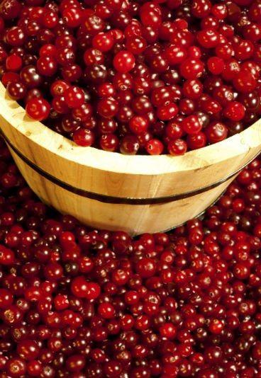 Benefícios do suco de cranberry - gravidez mais saudável