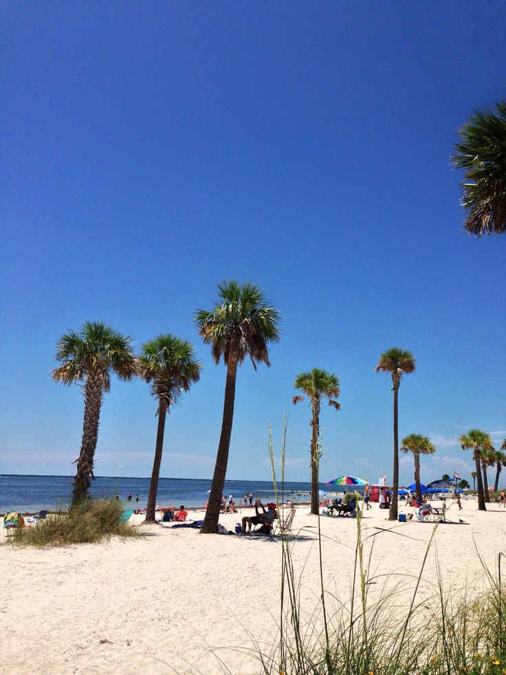119 best My Florida images on Pinterest Florida vacation, Florida