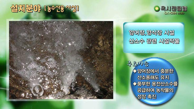 옥시젠클럽 동영상_.wmv