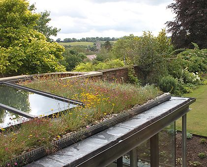 Kingsbury Croft by Designscape Architects  //  Green Roof, Galvanised Metal Frame, Glazing, Extension, Link to Garden, Internal and External Connection, Home, House, Architecture, Roof Light, Contemporary, Modern, Wild Flowers