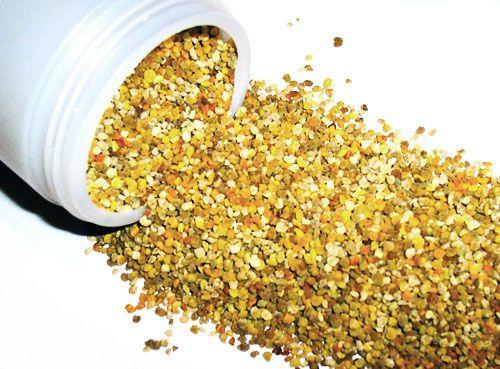 Pólen de abelha - Um dos alimentos naturais mais ricos em benefícios