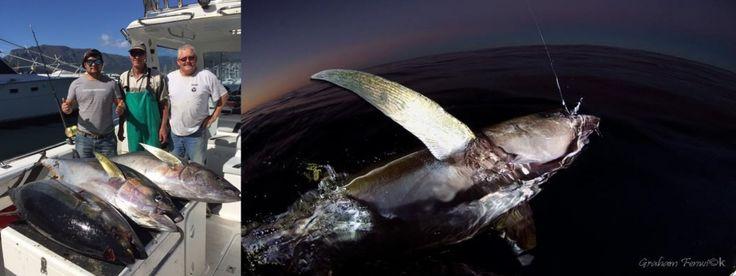 www.xtremecharters.co.za #fishing #inthedark #yellowfintuna