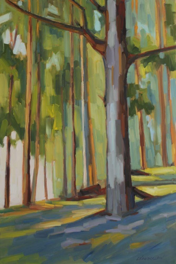 MICHAEL CHAMBERLAIN  Eucalyptus Grove