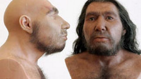 Neanderthal or Cro-magnon | Social Studies with Ms. Fitz