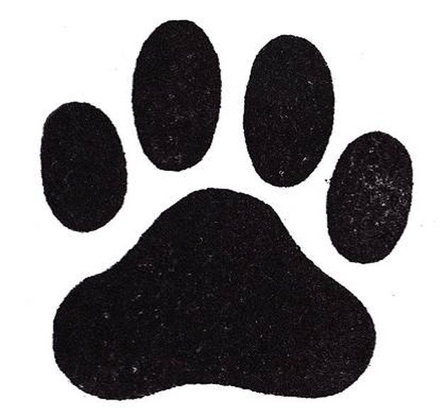How To Draw Dog Paws Puppy Paw Prints Dog Drawing Dog Paw Drawing