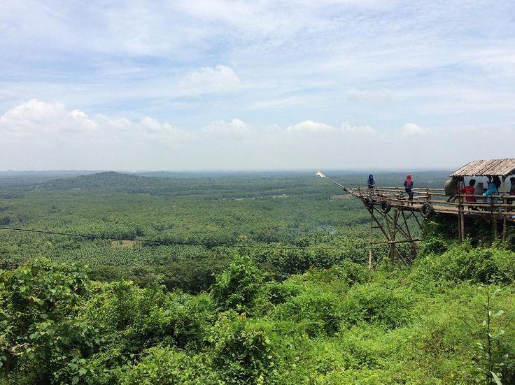 #akarlangit #trinil ' ' ' #nature #green #sky #skyview #clouds #bamboo #boat #forest #smartphonephotography #smartphone #mobilephototrip #artofmobile #originalphoto