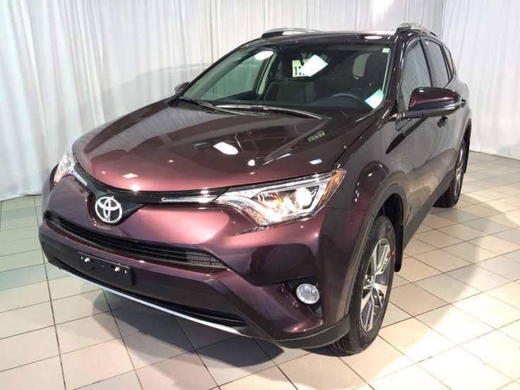 Toyota Camry Colors >> 2016 Toyota RAV4 XLE in black currant metallic... okay, it's purple... nevertheless, be still my ...