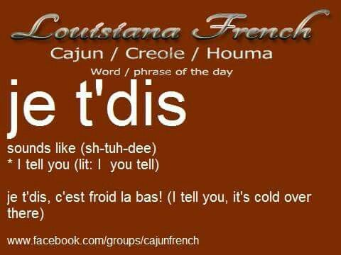 "Cajun French - Ends a statement of fact or a priclamation. ""Dat girl some kinda fat, I tell you (what)."" Replaced in English with ""I guarantee."""