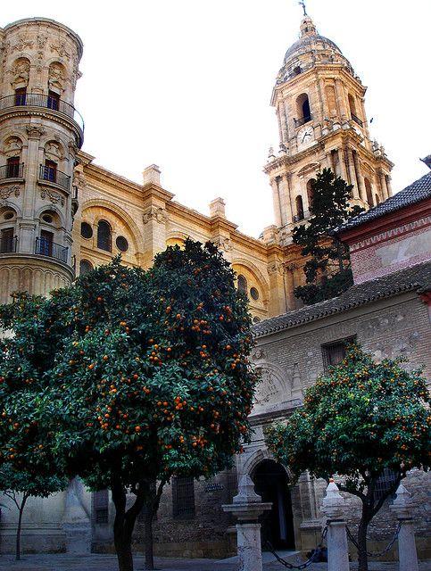 """Malaga´s Cathedral (""""La Manquita""""). Historic city centre. Malaga, Spain."""