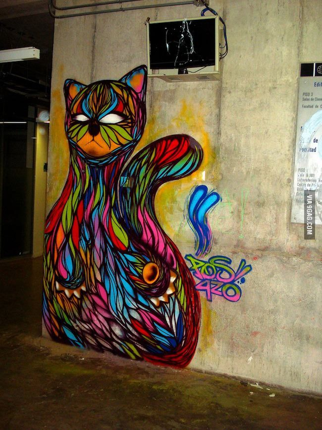 Colorful cat in Santiago, Chile.