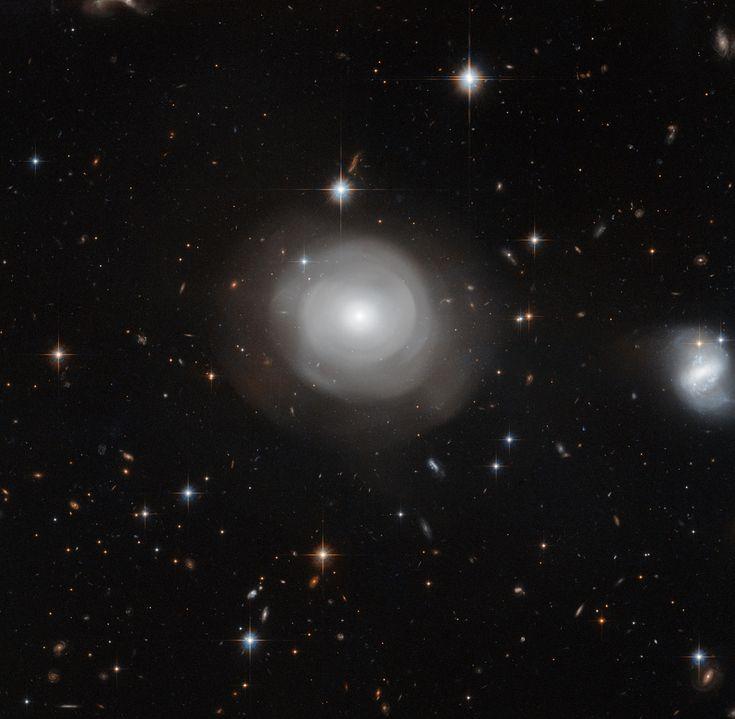 Hubble image of ESO 381-12. Image credit: NASA (http://www.nasa.gov), ESA (http://www.spacetelescope.org), P. Goudfrooij (STScI)