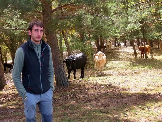 Nuevos ganaderos en el campo aragonés
