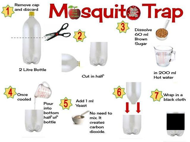 BEST homemade mosquito trap to kill those pesky bugs that really works to help keep you and you, your loved ones and your kids from being a blood donor!!!