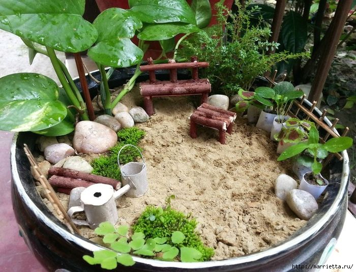 Miniature garden with his own hands (700x535, 377Kb)