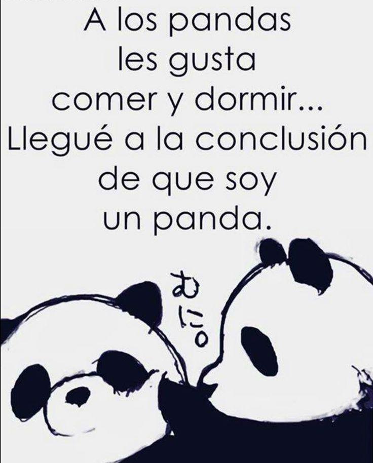 A los Panda les gusta comer y dormir llegue a la conclusión de que soy un panda