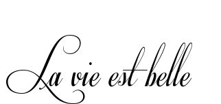 La vie est belle Tattoo, I would like this one underneath my boob