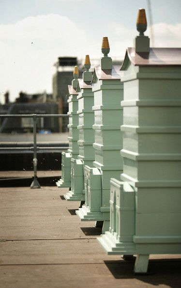 Newly installed behive sit on the roof at Fortnum and Mason on July 22, 2008 in London. Each hive currently contains 4000 Carnolian bees from the Italian Alps. In this first season on the roof - they will produce 200-300 jars of Fortnum's London honey. Each of the 4 hives is an individual design painted in Fortnum's famous eau de nile colour fronted by a triumphal arch styled in Roman, Gothick, Chinese or Mughal design.