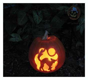 13 halloween CAT jackolanterns