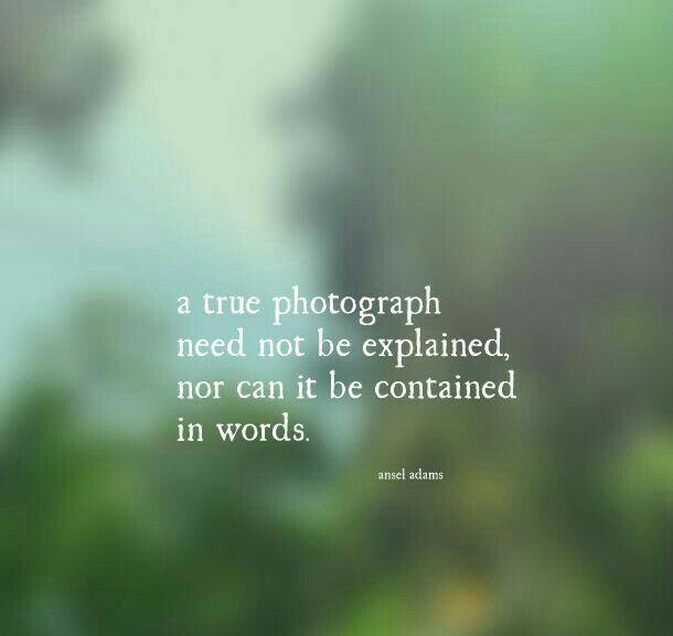 Eine wahre Fotografie ….