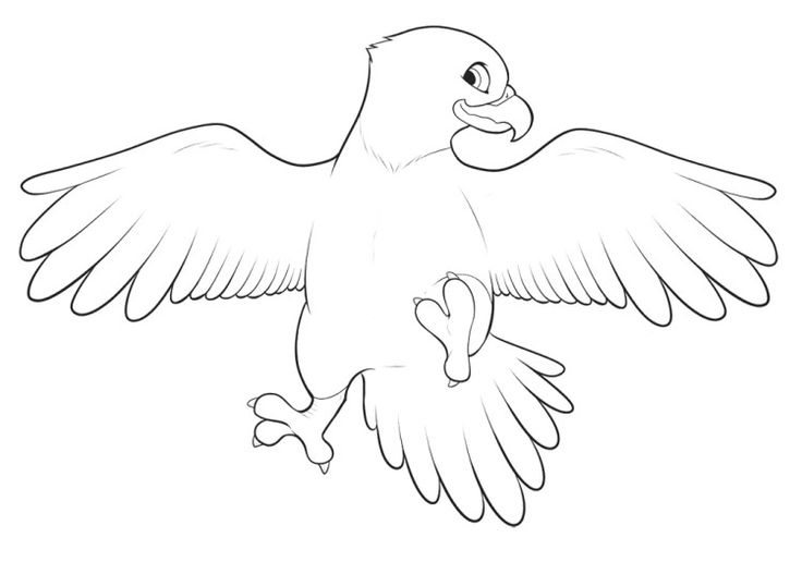eagle coloring pages easy - photo #4