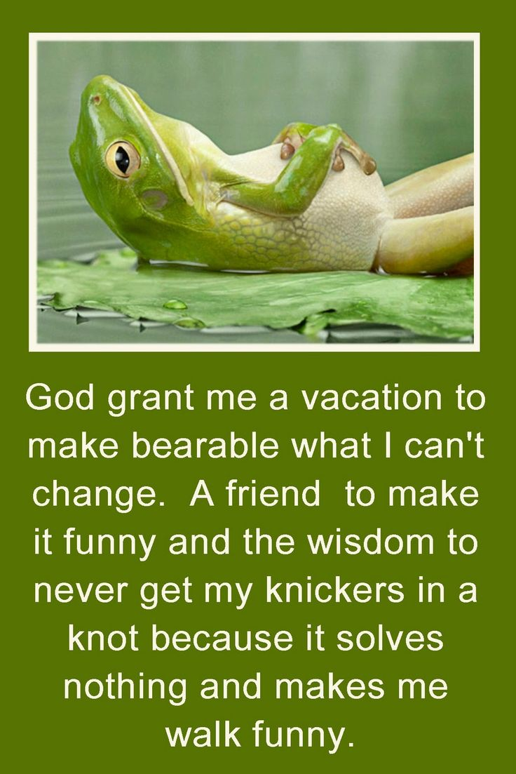 chilled outNeeds A Vacations, Summer Vacations, Remember This, Quotes, Funny, God Grant, Frogs, True Stories, Serenity Prayer