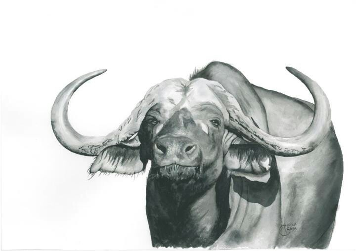 cape buffalo black and white watercolour african wildlife art pinterest buffalo. Black Bedroom Furniture Sets. Home Design Ideas