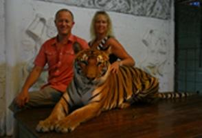 Sara the Tiger, Koh Samui, Thailand