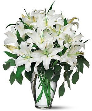Simple and Elegant White, 12 white lilies with a vase - China Flower Delivery