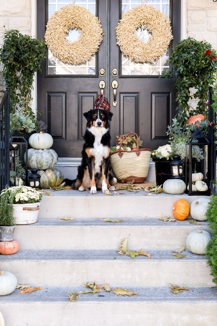 564 best fall decor images on pinterest | fall, beautiful and