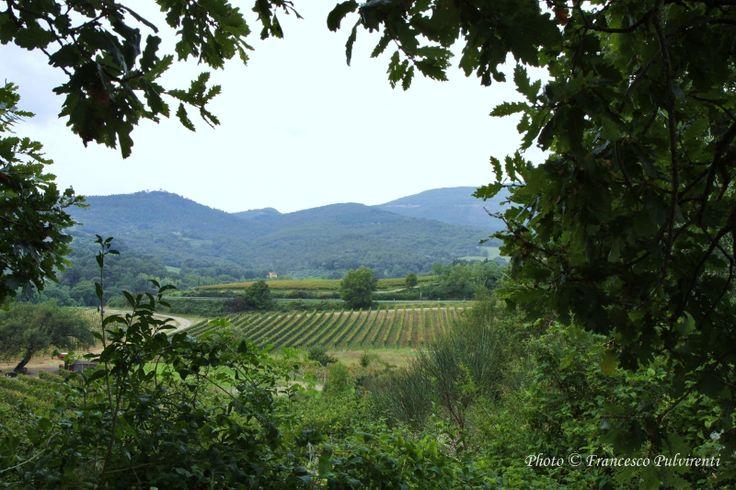 www.maconly.it - Corso Aperture 5/6 maggio San Quirico d'Orcia -Toscana
