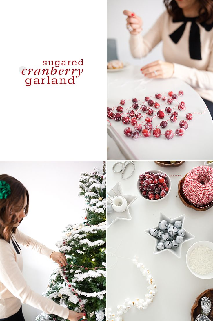 Sugared Cranberry Garland Trim the Tree with Four Homemade Garlands