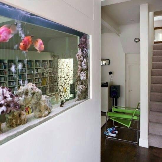 1000+ ιδέες για Aquarium Raumteiler στο Pinterest Einbauleuchten - led einbauleuchten küche