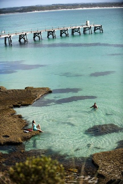 Kangaroo Island is Australia 's third largest Island just 16 kilometres off South Australia's coast. Offering spectacular coastal and bush scenery with over one third of the Island dedicated to National and Conservation Parks #kangarooisland