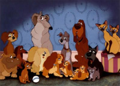 95 best DisNeY LaDy  The TRaMp images on Pinterest  Lady and the