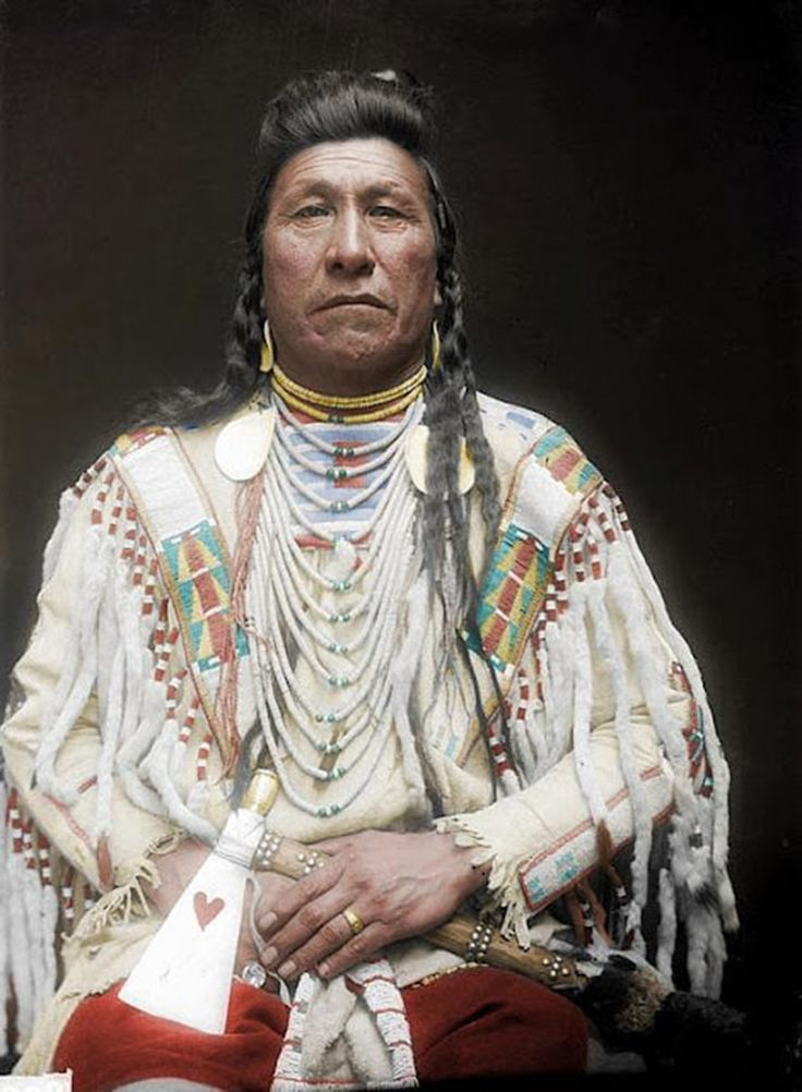Wearing a highly detailed white jacket, Plain Owl from the Crow tribe poses for the camera in 1910.