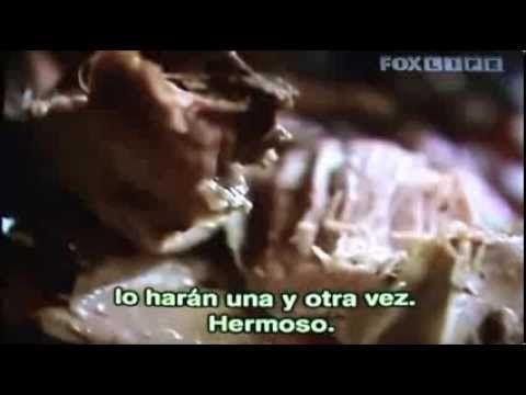 """En Casa de Jamie Oliver """"Paletilla de cordero asada"""" - YouTube"""