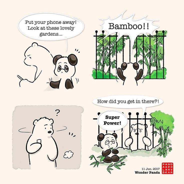 Wonder Panda – Panda and Polar Bear
