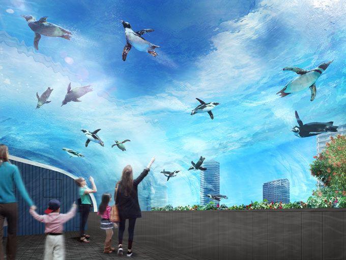 東京・池袋にあるサンシャイン水族館の屋外エリア「マリンガーデン」が、2017年7月12日(水)にリニューアルオープンする。サンシャイン水族館は、2011年8月に「天空のオアシス」をコンセプトに、最新の...