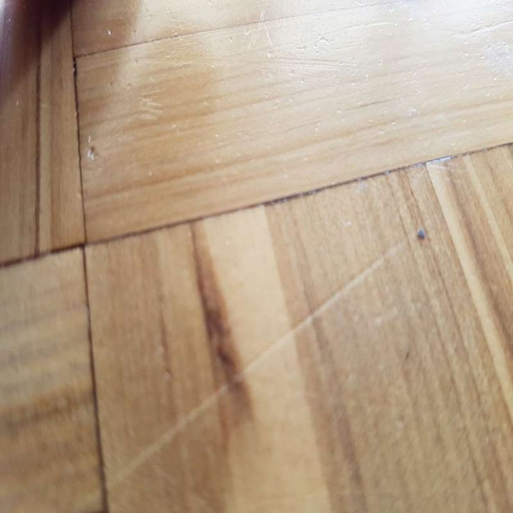 Warning: Dog claw damage to polished timber floors can ruin them in a short period of time. Find out what to expect and how or if it can be fixed here: http://www.economyfloorsanding.com.au/dog-damage/dogs-damaging-timber-floors/