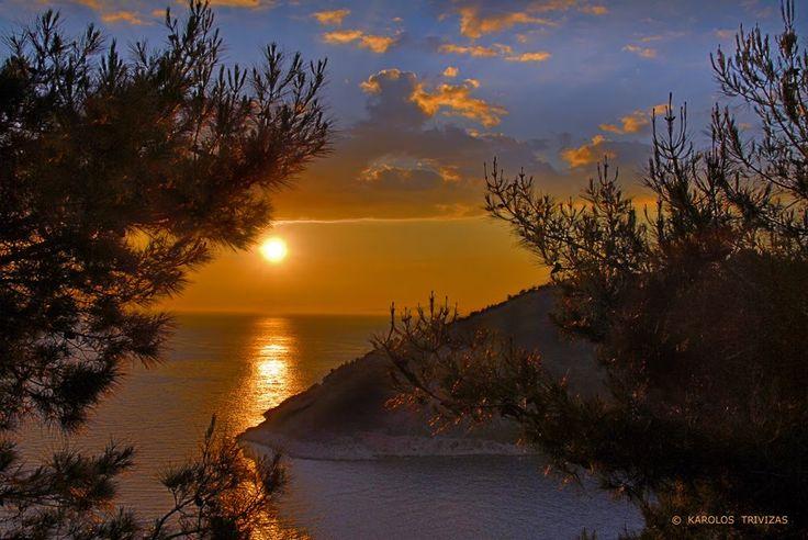SUNSET THROUGH THE PINES (GREECE - AEGEAN SEA - CHIOS ISLAND - AVGONYMA)