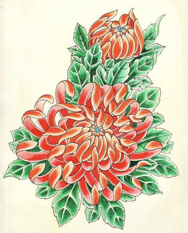124 best mums images on pinterest chrysanthemums flower and japanese chrysanthemum. Black Bedroom Furniture Sets. Home Design Ideas