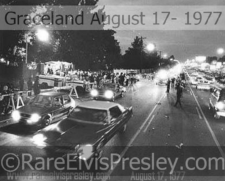 {*Elvis's home Graceland a Photo out the front Gates 17-8-1977 the night after Elvis's death :( on the 16--8-1977*}