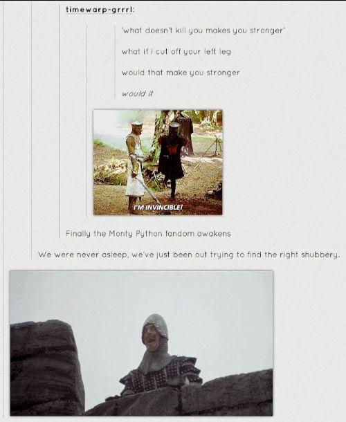 haha. i love Monty Python!