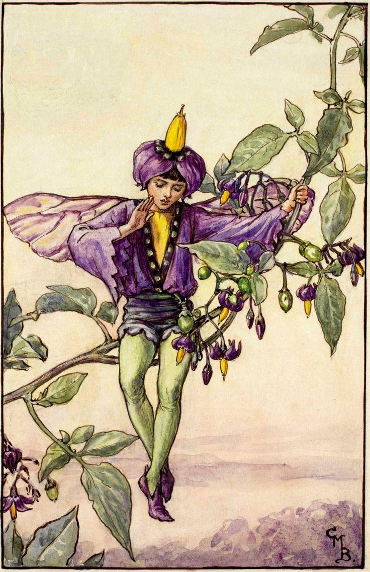 Nightshade Fairy- Cicely Mary Barker