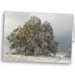 Lovely winter card!
