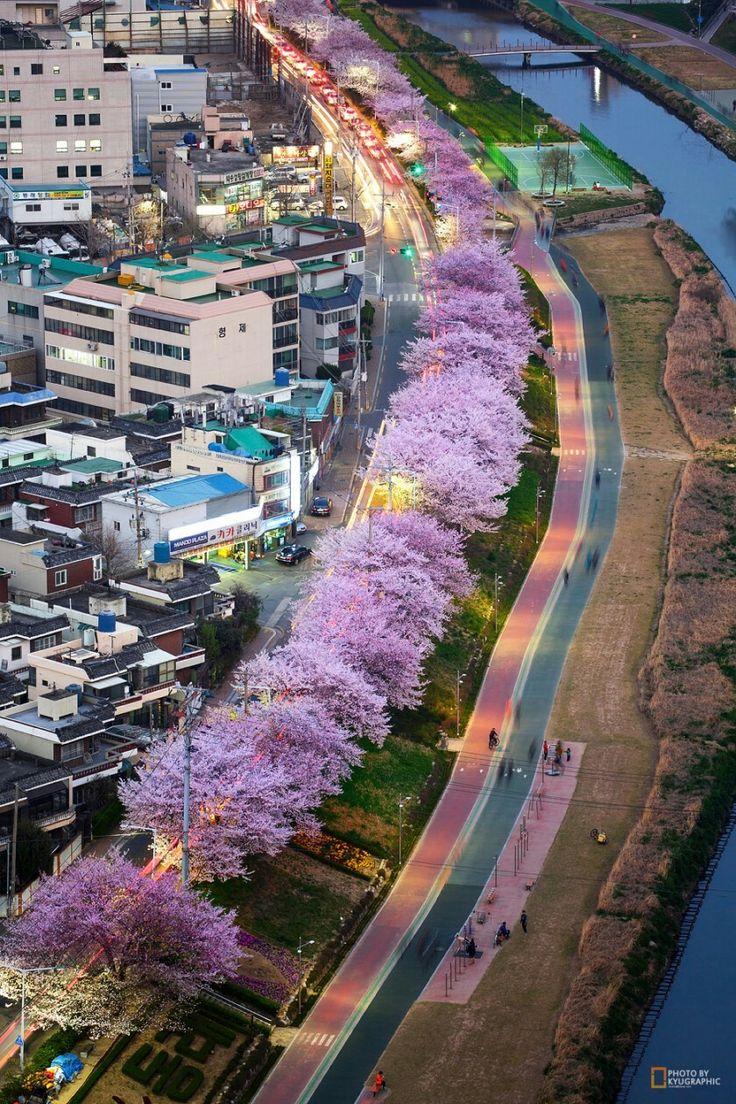 Busan,South Korea