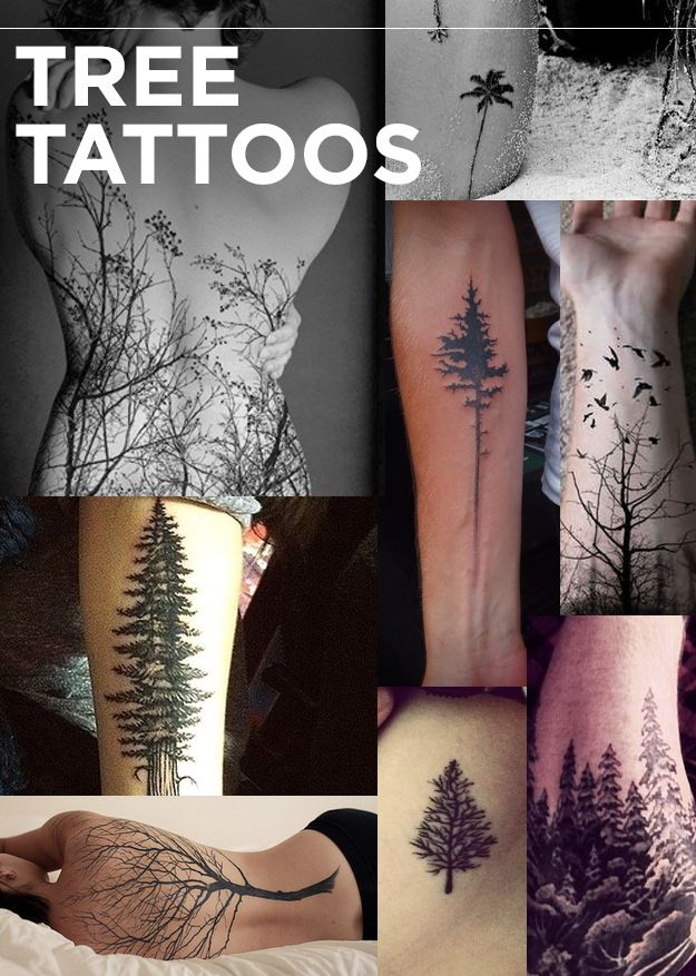 Tree Tattoos | The 13 Kinds Of Tattoos We All Wanted In 2013